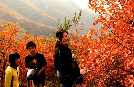大红寨风景区在哪里